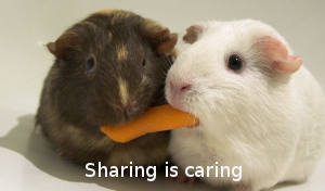 Sharing files and directories in Ubuntu Server