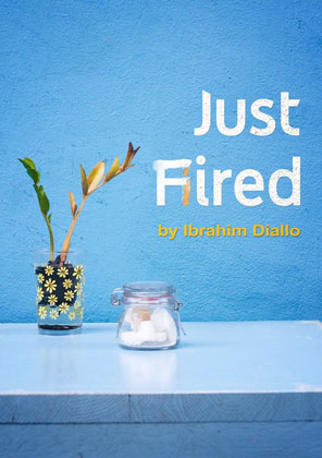 Just Fired Book cover