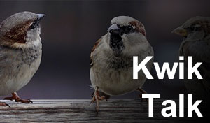 Kwik Talk - A Conversation Simulator