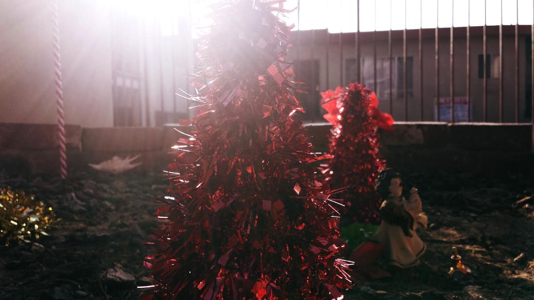Dawn of Christmas